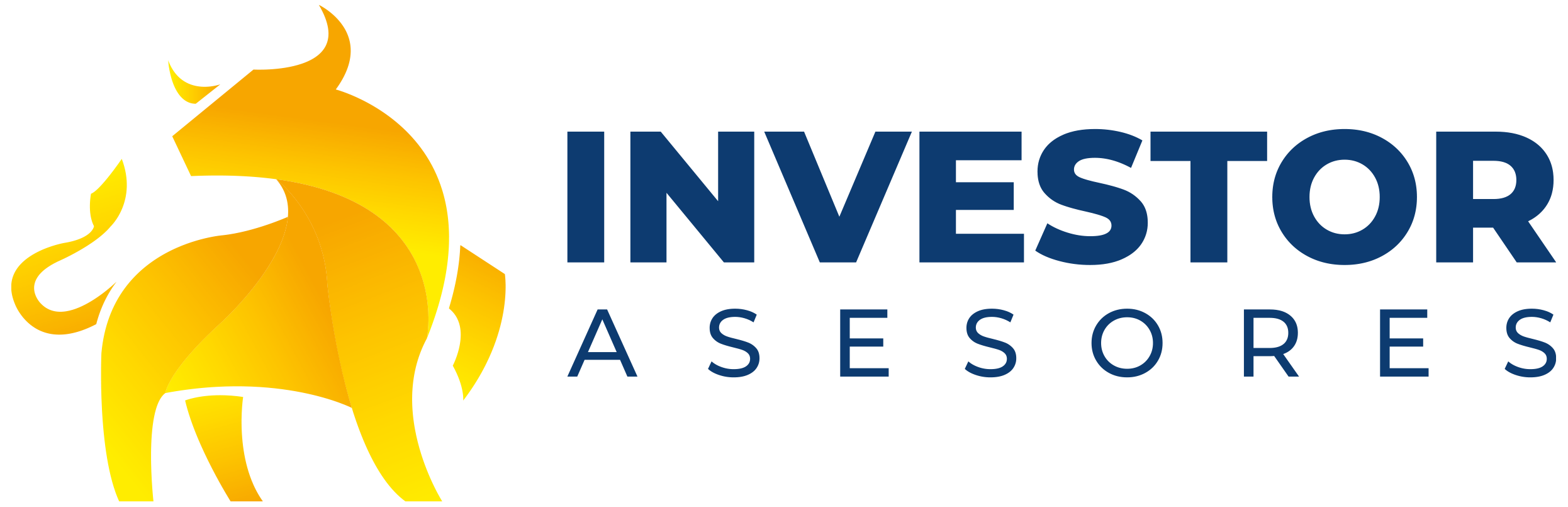 Investor Asesores